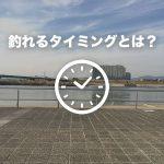 【初心者向け】淀川でブラックバスを釣る方法 -タイミング編-