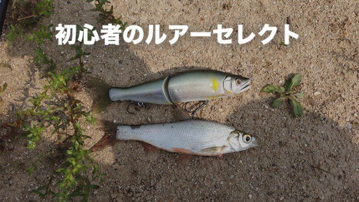 【初心者向け】淀川でブラックバスを釣る方法 -ルアーと操作方法-