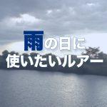 雨の日に使いたいルアー【淀川バス釣り】